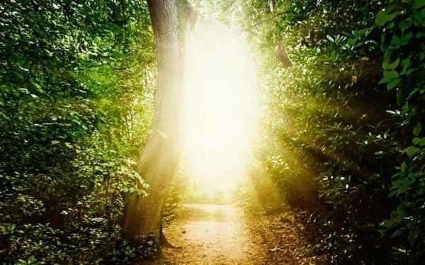 Licht bei Nahtoderfahrung