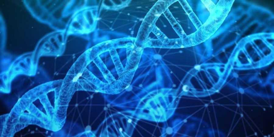 Schwingungserhöhung in der DNA